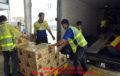 Dịch vụ vận chuyển, bốc xếp hàng hóa trọn gói giá rẻ
