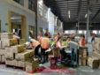 Đại Nam cung ứng lao động thời vụ hàng đầu tại Tphcm
